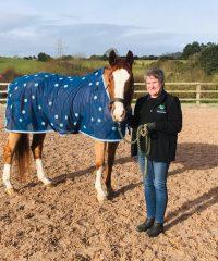 EcoGreen Equestrian