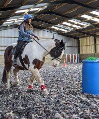 Horse Resource