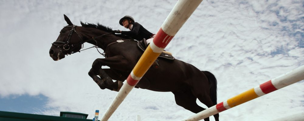 Living the Horselife without Equestrian Events