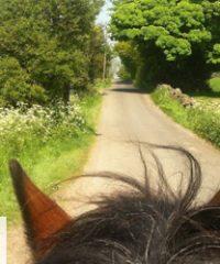 Alton Riding Centre