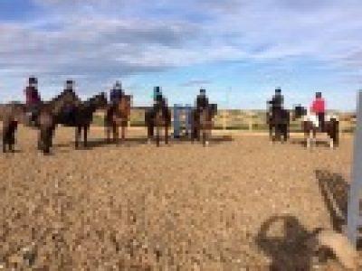 Aln Riding Club