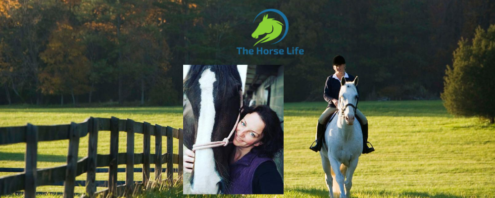 Loaning a horse, is it the way forward?